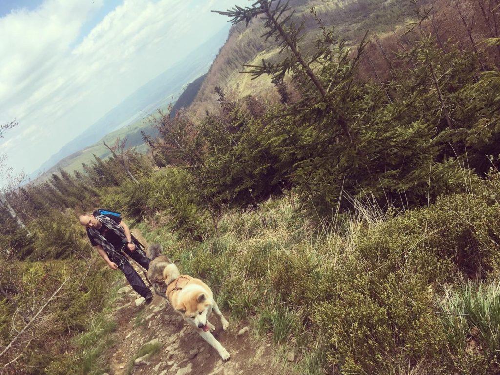 na szlaku z psem